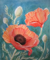 Poppies, watercolor by Patti Blair
